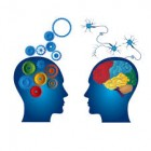 Curso Neurolinguística Aplicada ao Ensino e Aprendizagem / 50 horas